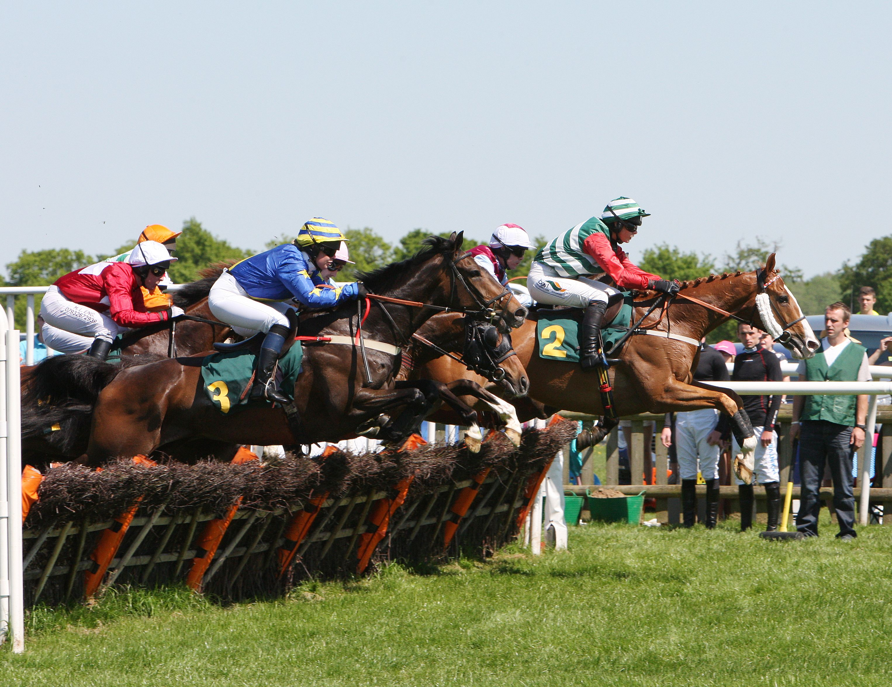 Lycetts Raceday | DECLARATIONS