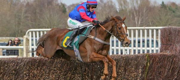 Step Back. Fakenham Racecourse