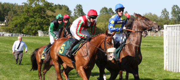 Green king Raceday at Fakenham Racecourse