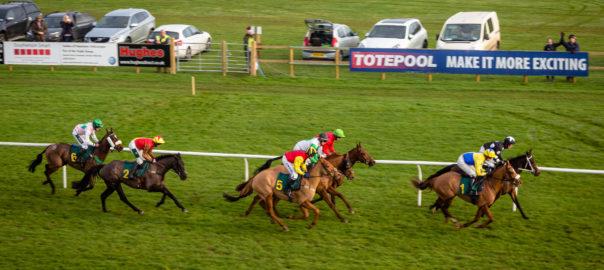 Fakenham Racecourse . 31st January race meeting