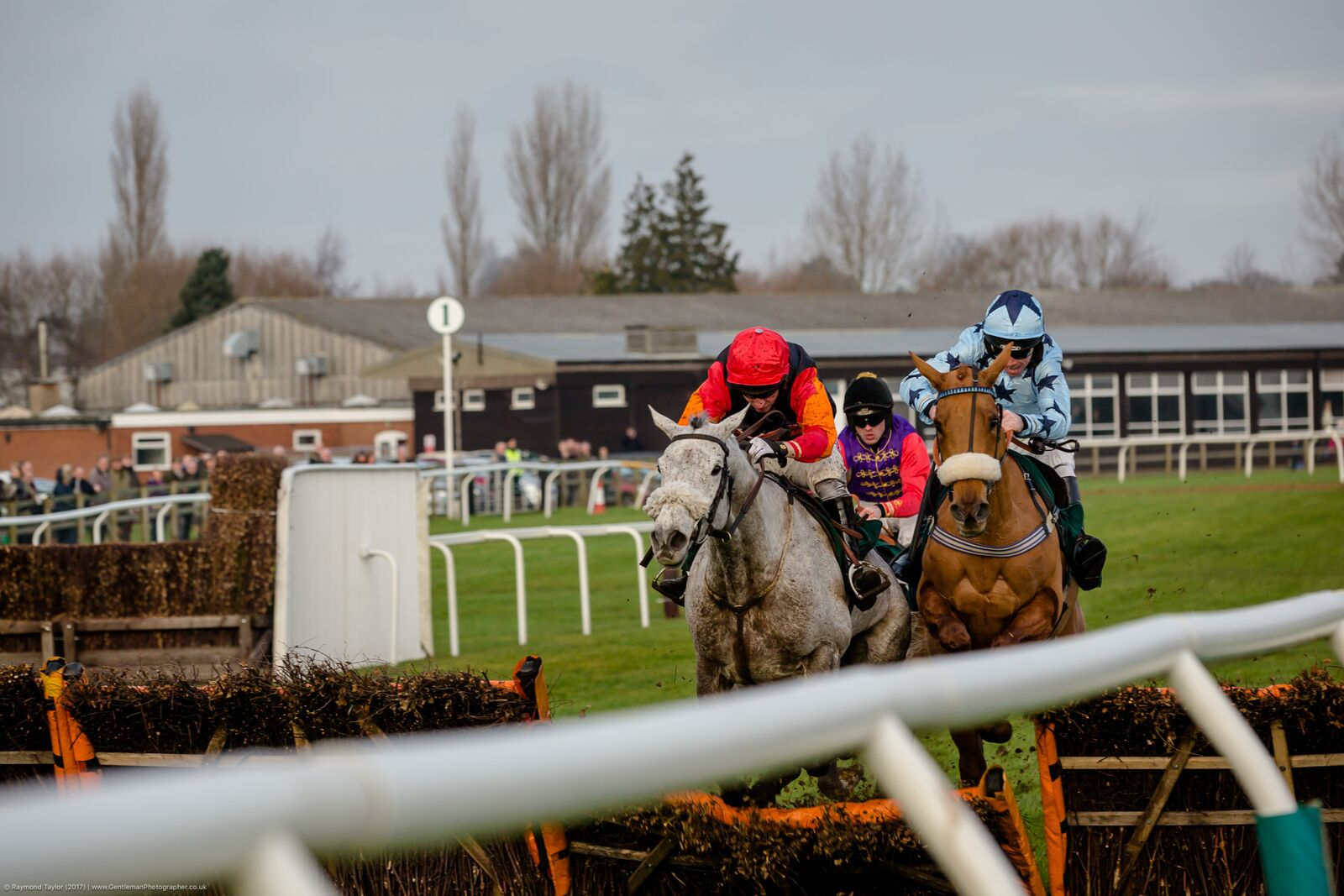 Fakenham's Silver Day to complement the golden goings-on at Cheltenham